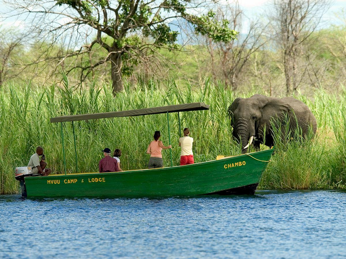 Partez pour un safari en petit groupe