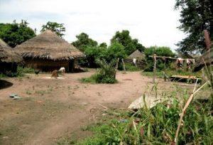 Village de Mako, circuit Pays Bassari