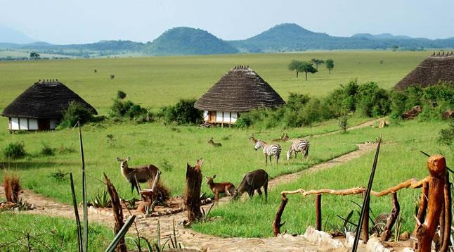 Kidepo - Circuit en Ouganda