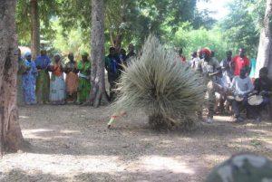 Cérémonie Diola, Casamance