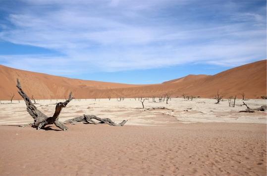 Deadvlei - autotour en Namibie