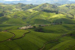 Collines du Rwanda