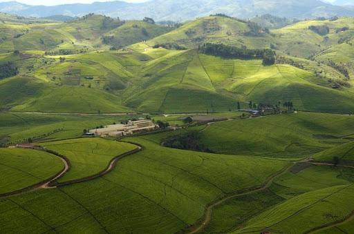 Collines du Rwanda - Voyage au Rwanda