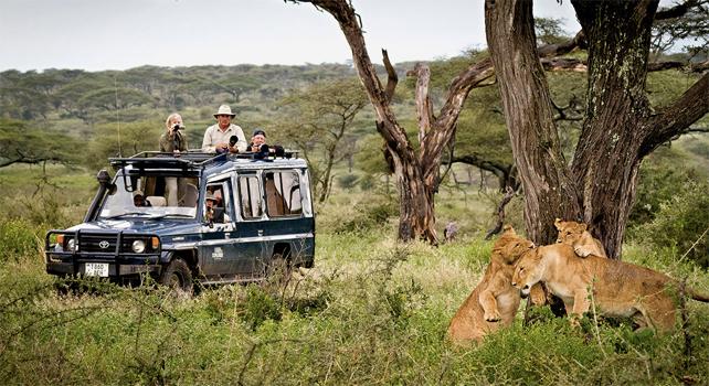 Tarangire, safari en Tanzanie