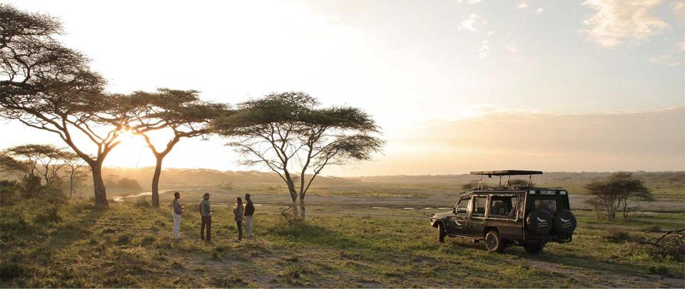 Safari parc Tarangire, Tanzanie