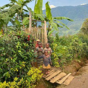 Village Nyungwe