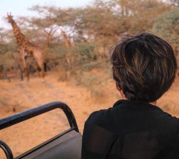 La Girafe qui vole, voyage dans le sine saloum