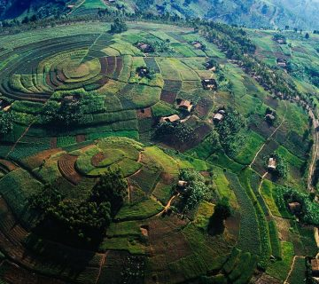 Colinnes du Rwanda- Voyage au Rwanda