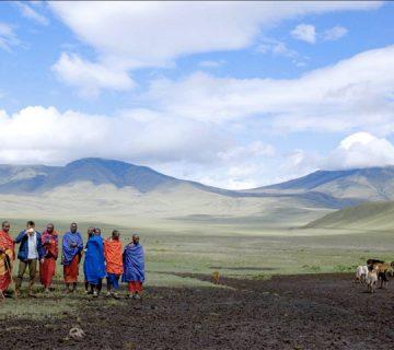 Immersion chez les Massai