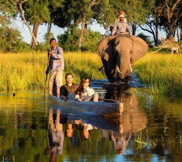 Mokoro Botswana - Safari delta de l'okavango