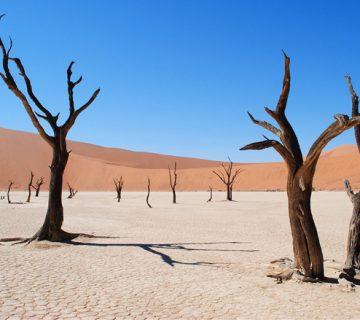 Deadvlei , Namibie - voyage organisé en Namibie
